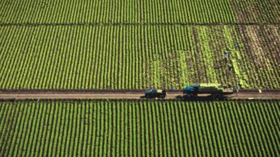 Mantiene Sinaloa desarrollo económico en el segundo trimestre de 2015