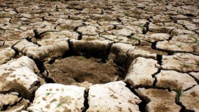 Cambio climático: El costo de la desidia