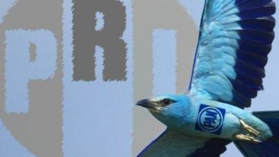 """Defiende PRI a los López y acusa: opera """"Ave Azul"""" en Sinaloa"""