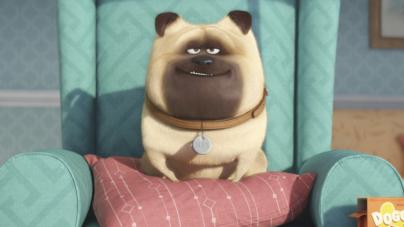 El cine que viene | De la vida secreta de tus mascotas a Snoopy