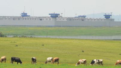 LOS REOS MANDAN | La CNDH advirtió que ingobernabilidad y corrupción reinan en las cárceles