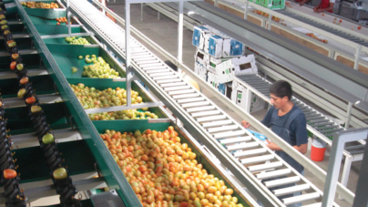 Sinaloa dolarizado   ¿Es tan mala la depreciación del peso?
