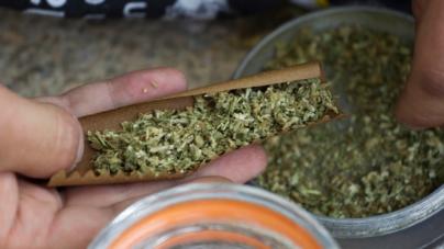 SCJN valida uso recreativo de la marihuana