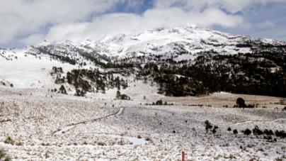 Sinaloa rodeado por el frío   Declara Segob emergencia en Badiraguato por helada severa