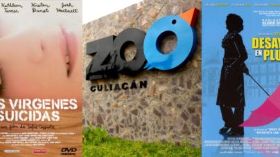 #3CosasQue… puedes hacer hoy en Culiacán
