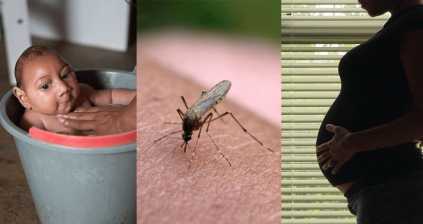 Tema de la Semana | Zika: más preguntas que respuestas…