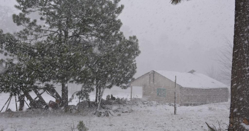41227087. México.- El Servicio Meteorológico Nacional (SMN) advirtió que el frente frío número 22, que estará acompañado de un canal de baja presión, provocará este sábado lluvias, vientos fuertes, caída de nieve y heladas sobre los estados de Sonora, Chihuahua y Durango. NOTIMEX/FOTO/ESPECIAL/COR/WEA/INVERNAL14/