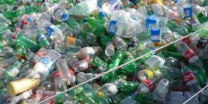 Una bactería que come plástico podría cambiar la manera en que reciclamos