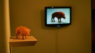 """Fotogalería   Masin te invita a las exposiciones """"Endangered Species"""" y """"Tres Pies: el enigma de la sucesión"""""""