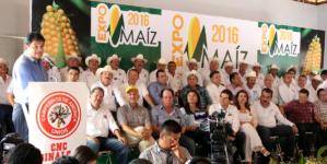 """""""México no está tan mal en la realidad como se percibe"""": Malova"""