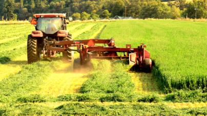 Urge más productividad agrícola para mejorar condiciones socioeconómicas en Sinaloa