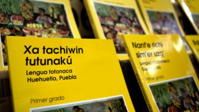 Libros de texto gratuito estarán a tiempo para iniciar el ciclo escolar en Sinaloa