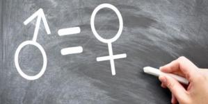"""""""En ningún lado dice que la Comisión de Equidad la debe presidir una mujer"""": Diva Hadamira"""