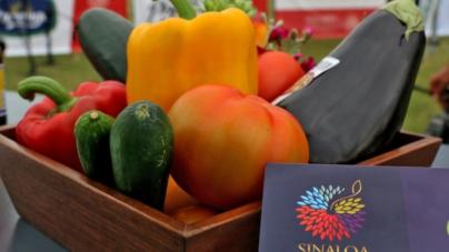 Anuncian la cuarta edición de Sinaloa Encanta