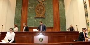 LO LEGAL ES | ¿Puedo atestiguar lo que hacen los diputados en el Congreso?