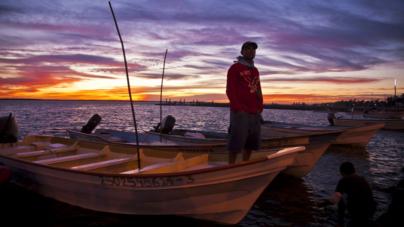 Acuerdan agenda pesquera y acuícola que dé mayor impulso al sector en Sinaloa