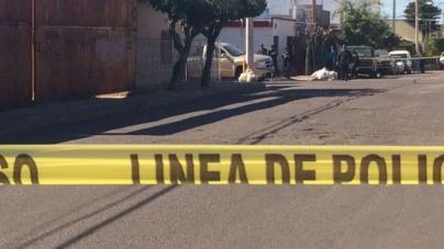 TEMA DE LA SEMANA   Imaginemos a Sinaloa con seguridad pública