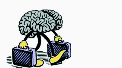 Fuga de cerebros | Aumentan emigrantes con escolaridad media y media superior