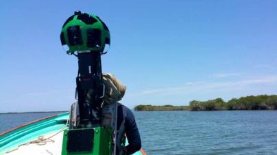 Google y la UAS documentan biodiversidad de Sinaloa