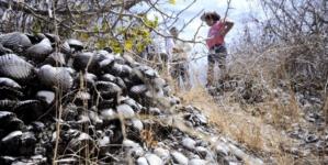 Pirámides antiguas de Sinaloa | La tarea que no hacemos
