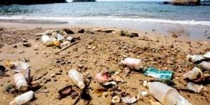 'México debe innovar en el manejo de residuos sólidos': Fundación Reinventando a México