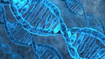 ¿Día de qué? | La medicina en la era del genoma humano