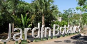 'El jardín es de todos' |  Directora del Botánico invita a colaborar a Estrada Ferreiro