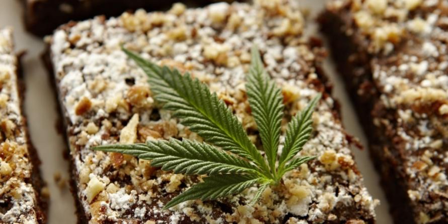 Abren foros en busca de ley que regule la mariguana