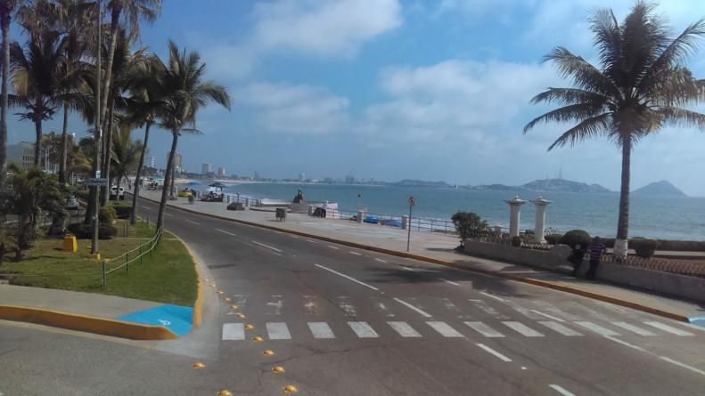 Y siguen con las palmeras | Se van los estacionamientos centrales del malecón de Mazatlán