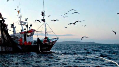 Con recorte presupuestal, los recursos para pesca deberán administrarse mejor: armadores