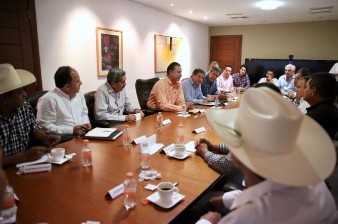 Sinaloa sembrará superficie récord de maíz amarillo para promover reconversión productiva