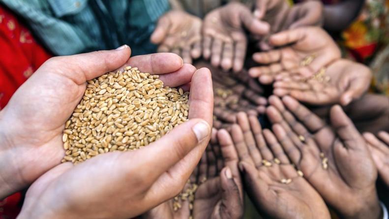 ¿Día de qué? | Alimentación y migración: dos problemas, un mismo enfoque