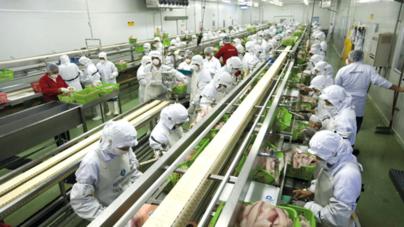 Sinaloa 4to lugar nacional en crecimiento industrial: INEGI