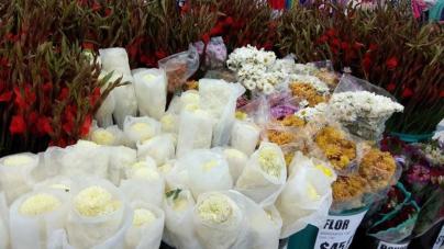 Precios de flores para Día de Muertos no aumentarán este año