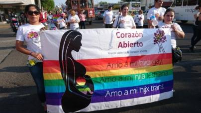 """""""Defensores de derechos LGBT tenemos que trabajar en la sombra"""": Corazón Abierto, A.C."""