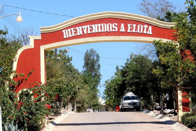 Reporte ESPEJO | Elota, reto y prueba para la seguridad pública