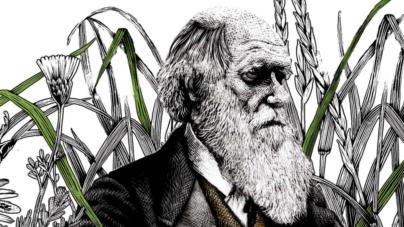 Lo dice la ciencia | El tiempo y el cambio climático anotan otro punto para Darwin