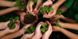 Salvando al planeta | Semarnat convoca a participar en Premio al Mérito Ecológico