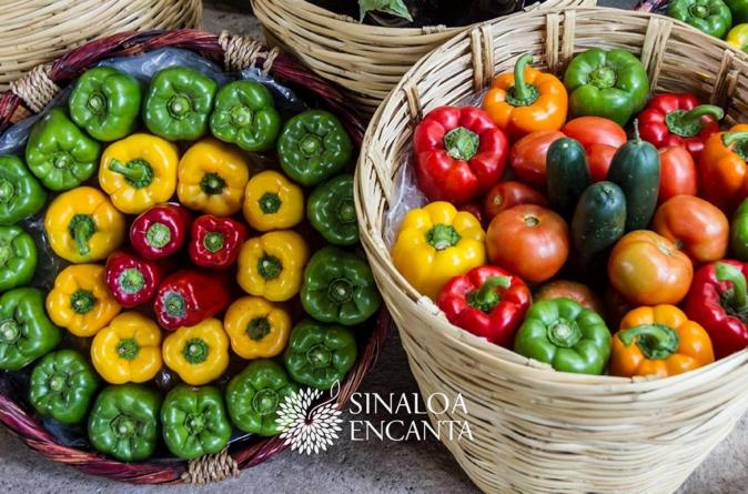Sinaloa Encanta busca resaltar la gastronomía culichi con la Primera Ruta Gastronómica