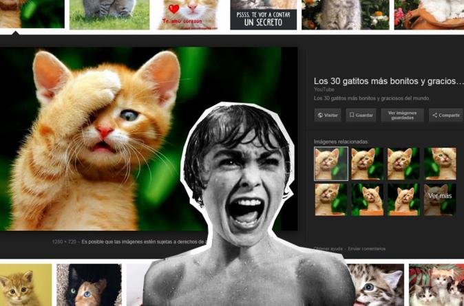 Google dice adiós al botón de 'ver imagen' en su buscador