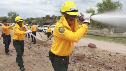En lo que va de 2018 se han registrado 15 incendios forestales en Sinaloa