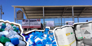 Coepriss | Escuinapa estrena centro de acopio de envases químicos