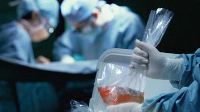 Donador por default | Senado aprueba donación de órganos de manera automática