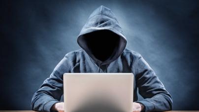 Ratas en la red   Fraudes cibernéticos, un nuevo gran problema en México