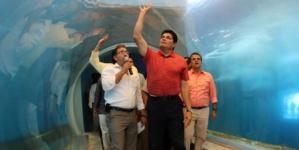 Efecto ESPEJO | Caso tiburonario: la justicia más vale tarde que nunca