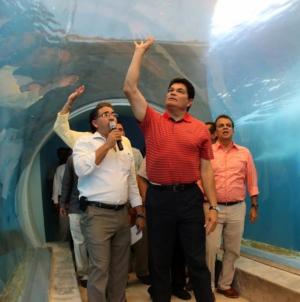 Efecto ESPEJO   Caso tiburonario: la justicia más vale tarde que nunca