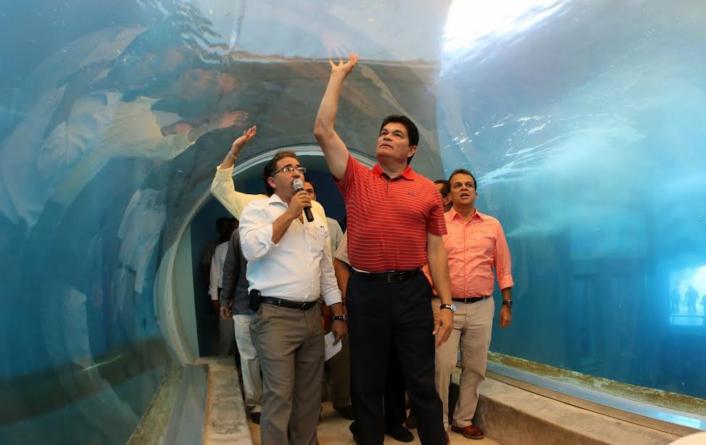 Reporte ESPEJO | Huella de corrupción en Sinaloa: tiburonario y 'elefantes blancos'