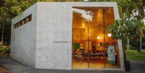 El poder de los libros | Una colecta del Botánico para luchar contra la violencia