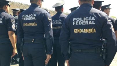 Policía Federal invita a los culichis a participar en una carrera para promover la paz