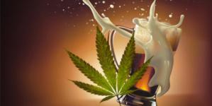 Cerveza Cannabiense | Crean en Canadá la primera cerveza del mundo a partir de la marihuana